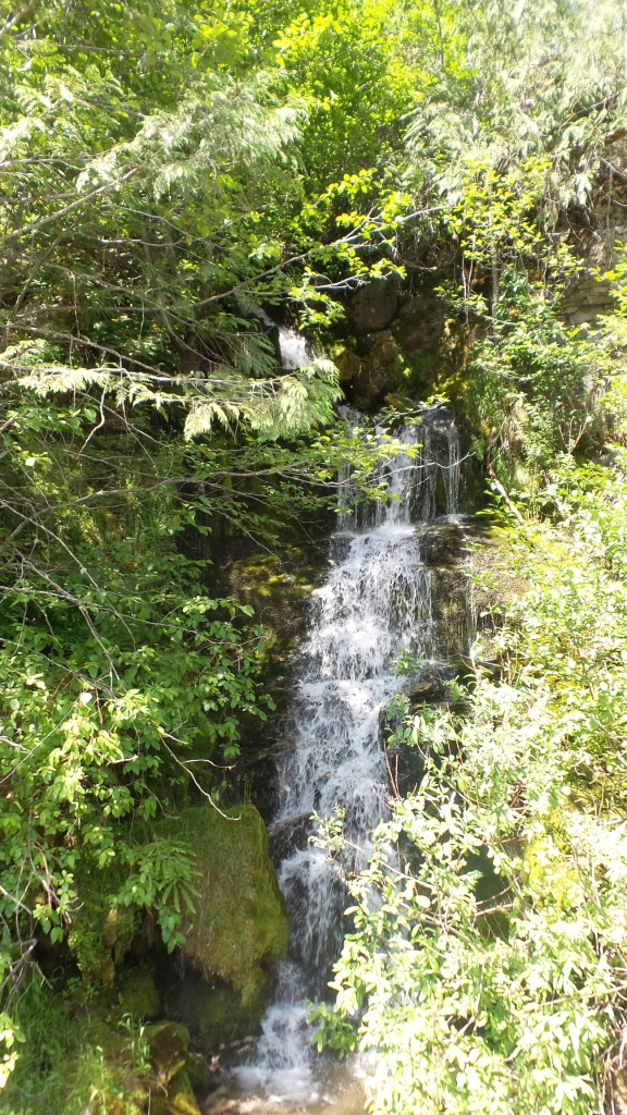 Waterfall in Clearwater National Forest